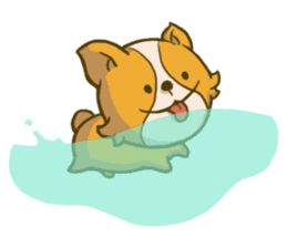 Melon the Corgi Puppy sticker #10521674