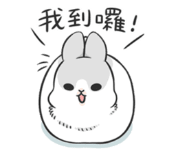 Machiko rabbit 3 sticker #10525107
