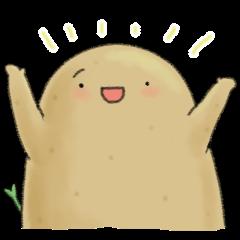 Chubby potato