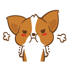 Corgi Dog KaKa - Drama Queen