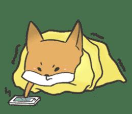 Carman fox sticker #10604005