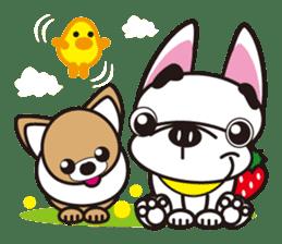 French bulldog Hana and dogs sticker #10626038