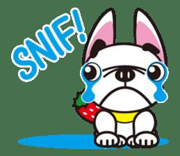 French bulldog Hana and dogs sticker #10626044