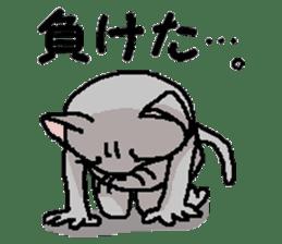 He is a cat named Gal 8 sticker #10643746