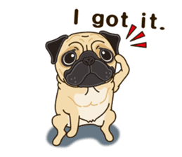 A sticker willingly. Pug (English) sticker #10646564