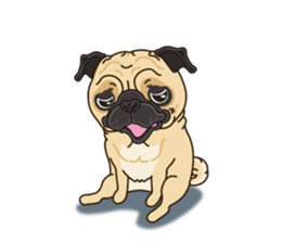 A sticker willingly. Pug (English) sticker #10646574
