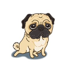 A sticker willingly. Pug (English) sticker #10646577