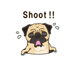 A sticker willingly. Pug (English) sticker #10646580