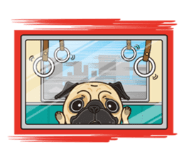 A sticker willingly. Pug (English) sticker #10646586