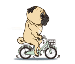 A sticker willingly. Pug (English) sticker #10646588
