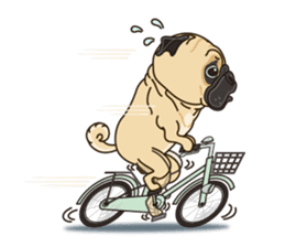 A sticker willingly. Pug (English) sticker #10646589
