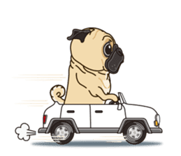 A sticker willingly. Pug (English) sticker #10646590