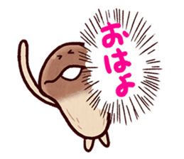 My neighbor NAMEKO. sticker #10665695