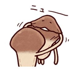 My neighbor NAMEKO. sticker #10665702