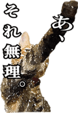 balzo-waruyama 2 sticker #10733861