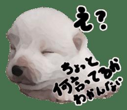 Sticker Shibainu(vol4) sticker #10750858