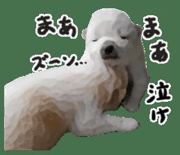 Sticker Shibainu(vol4) sticker #10750882
