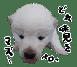 Sticker Shibainu(vol4) sticker #10750884