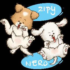 Zipy & Nero (in Daily Life)