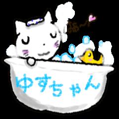 White Cat Yuzu Chan