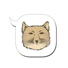 Tibetan Sand Fox of a straight face sticker #10883979