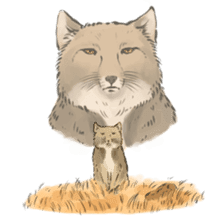 Tibetan Sand Fox of a straight face sticker #10883994