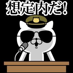 Military cat 3