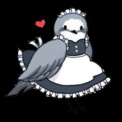 Birds of maid