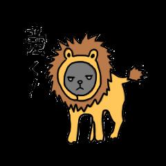 mato mato tsumo 1115| elPortale | Sell LINE Sticker, Sell LINE Theme