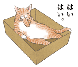 CAT IN THE BOX and ... sticker #10904216