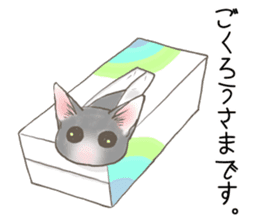 CAT IN THE BOX and ... sticker #10904224