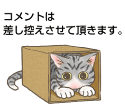 CAT IN THE BOX and ... sticker #10904230