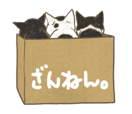 CAT IN THE BOX and ... sticker #10904234