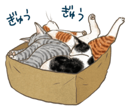 CAT IN THE BOX and ... sticker #10904242