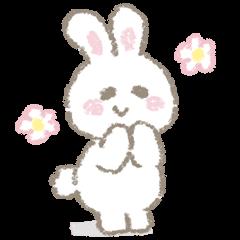 The soft bunny