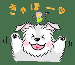 Miniature Schnauzer SYU-chan sticker #10959115