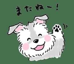 Miniature Schnauzer SYU-chan sticker #10959117