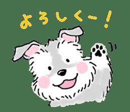 Miniature Schnauzer SYU-chan sticker #10959120