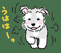 Miniature Schnauzer SYU-chan sticker #10959130