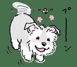 Miniature Schnauzer SYU-chan sticker #10959136