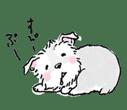 Miniature Schnauzer SYU-chan sticker #10959144