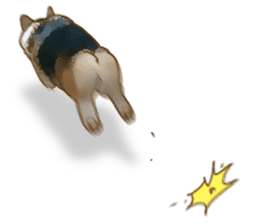 Dangerous Corgi 2 sticker #10968262