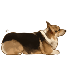 Dangerous Corgi 2 sticker #10968272
