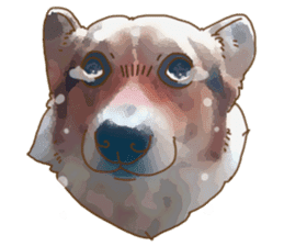 Dangerous Corgi 2 sticker #10968276