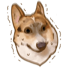 Dangerous Corgi 2 sticker #10968277