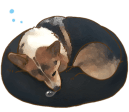 Dangerous Corgi 2 sticker #10968287