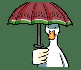 Quack Quack Duck Talk (part 3) sticker #10989355