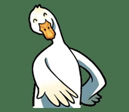 Quack Quack Duck Talk (part 3) sticker #10989377