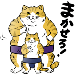 Cat Sumo Wrestlers