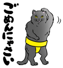 Cat Sumo Wrestlers sticker #11017319